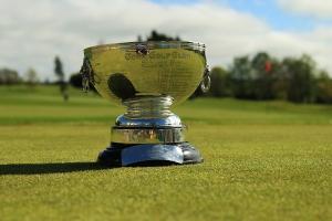 The Cork Scratch Cup
